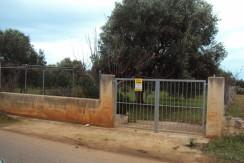 Via Parco Lorusso